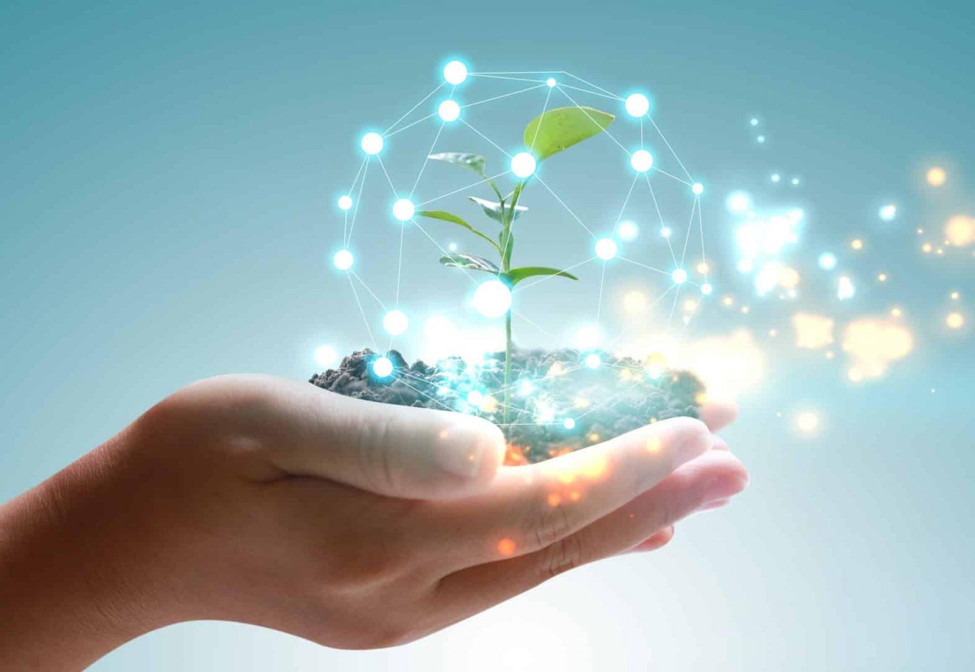Main tenant un globe avec une plante verte qui pousse. Concept respectueux de l'environnement
