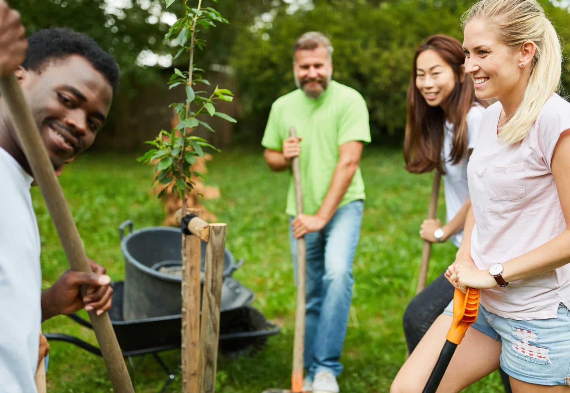 shutterstockteam-volunteer-plants-tree-together-park_1440961073